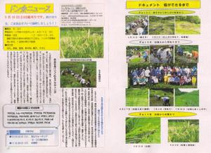 Scan10565